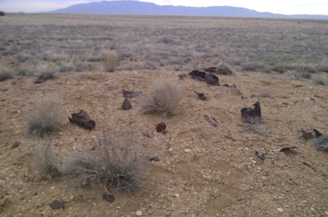 Image of munitions debris. Potential FUDS properties are found in all 50 states.