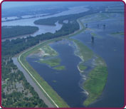 Photo of Mississippi River Levee